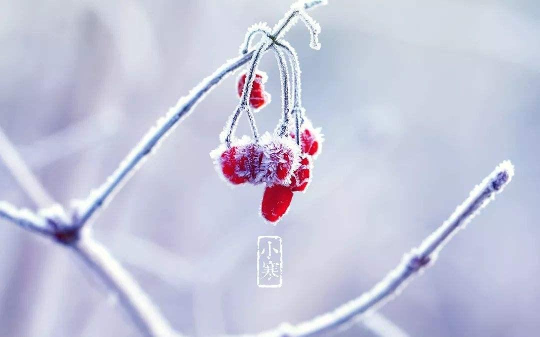 美容院新年贺词_盘点小寒节气美容院的暖心问候_祝福话术